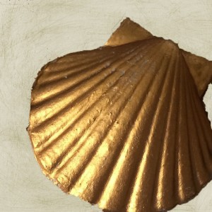 goldenpatinashell